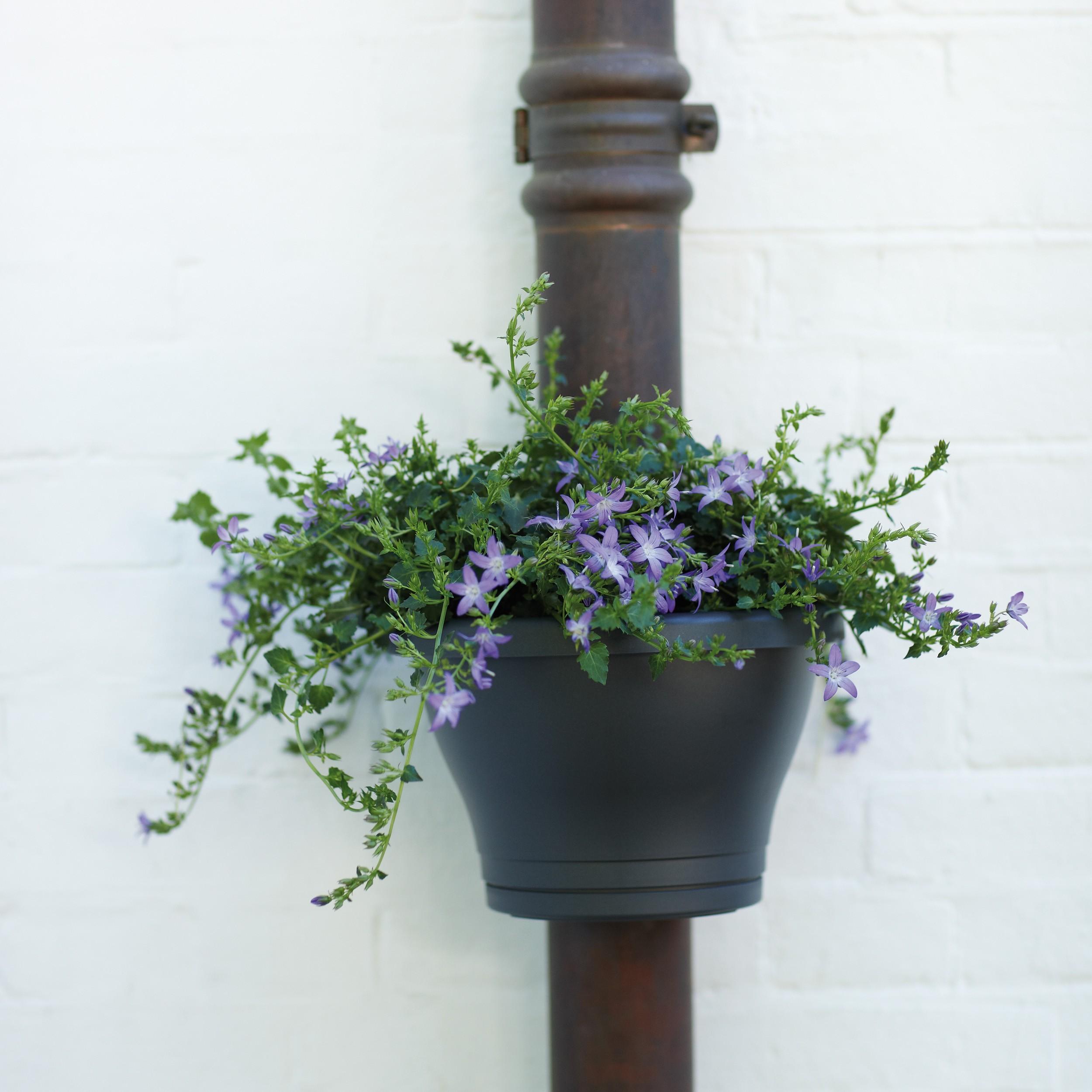 Elho Corsica pioggia tubo fioriera fiori vaso cassetta per fiori Ø 24cm fiori