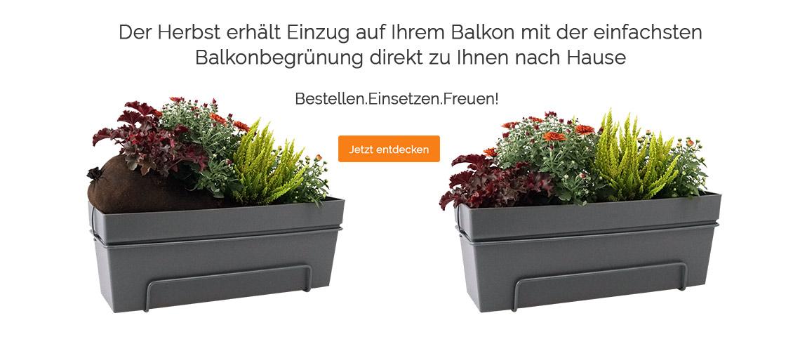 Blumixx - Die einfachste Balkonbepflanzung der Welt
