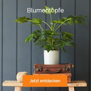 /wohnen-deko-pflanzgefaesse-fuer-drinnen