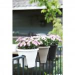elho_corsica_flower_bridge_30_bepflanzt-kapkoerbchen
