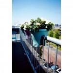 elho_corsica_flower_bridge_30cm_mint-balkon