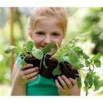 elho_starter_set_green_basics_lebhaftschwarz_1