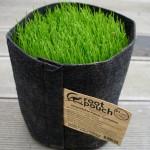 root-pouch-pflanztasche-3-8liter-ohne-griffe-schwarz-bepflanzt
