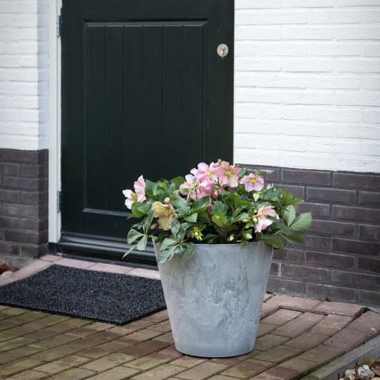 Blumentopf | modern, stylish & hochwertig | online bei Blumixx kaufen