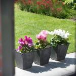 artstone_blumentopf_ella_schwarz_30cm_terrassenbepflanzung