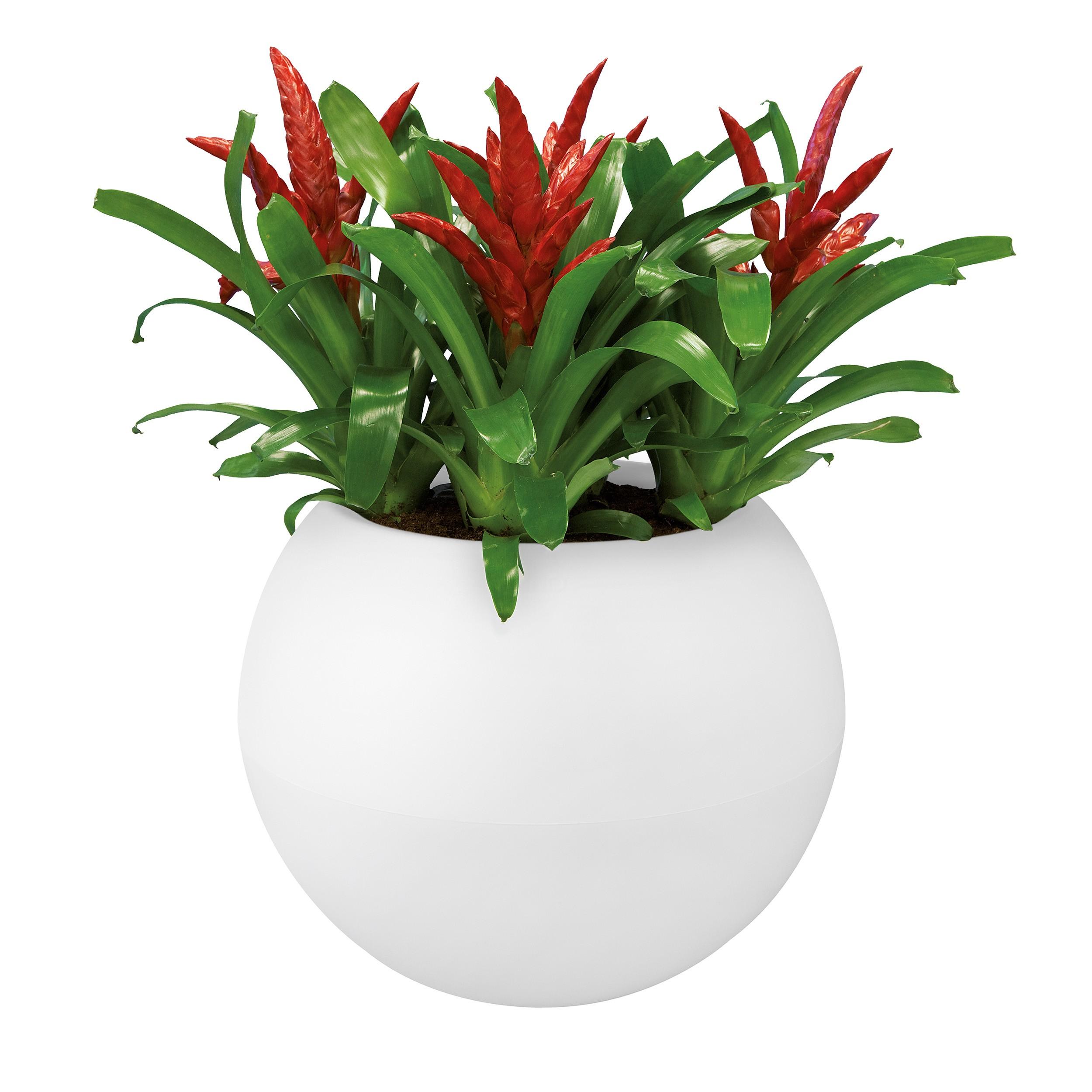 elho-blumentopf-rund-pure-ball-weiss-50cm-1 Elegantes Blumentopf Durchmesser 50 Cm Dekorationen