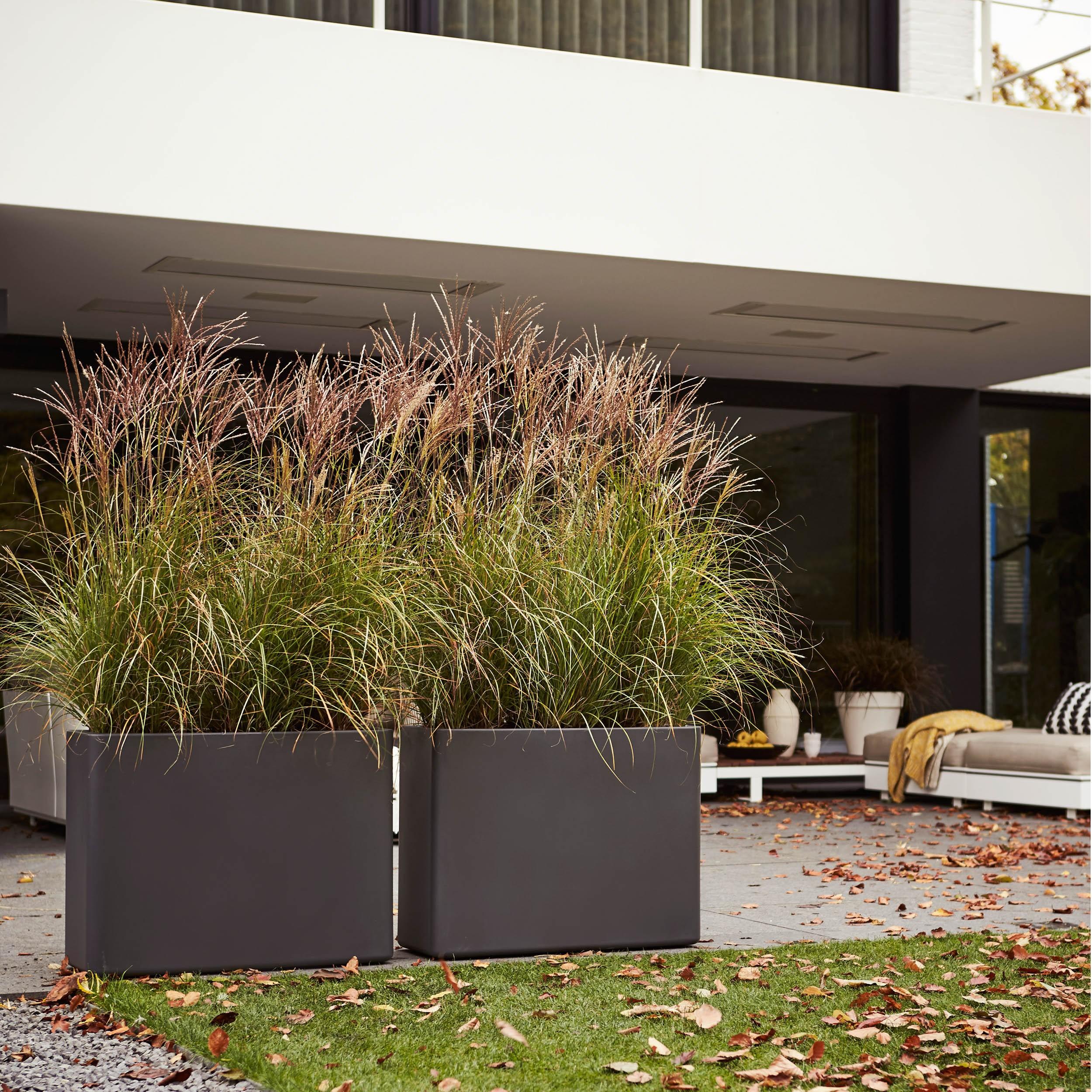 pflanzkasten pure soft brick divider mit rollen l80cm